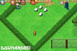 Sheep Gba Rom Download Arena