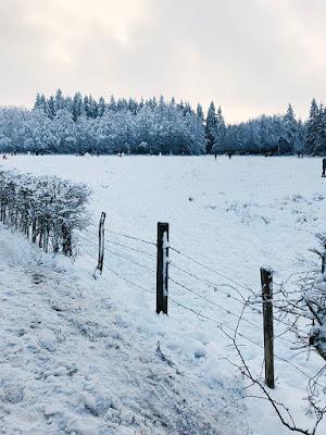 Snow in Belgium Mont Rigi Signal de Botrange