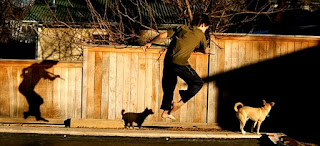 Luke jumping, and his dog, with both their shadows on the wall