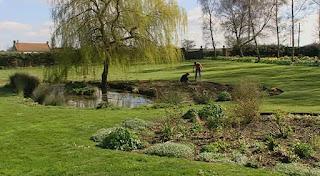 Bryony Jacklin's garden