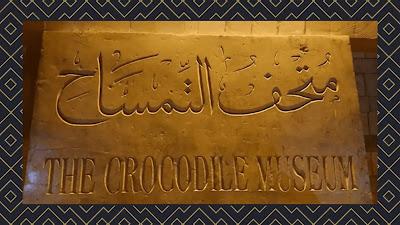 The Crocodile Museum