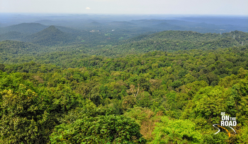 The panoramic Shola forest view from Hulikal ghat, Karnataka