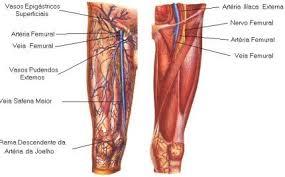 CANSAÇO E DOR NAS PERNAS - QUAIS AS CAUSAS E COMO TRATAR origem muscular problemas nos ossos origem articular problemas nos nervos problema de circulação VARIZES
