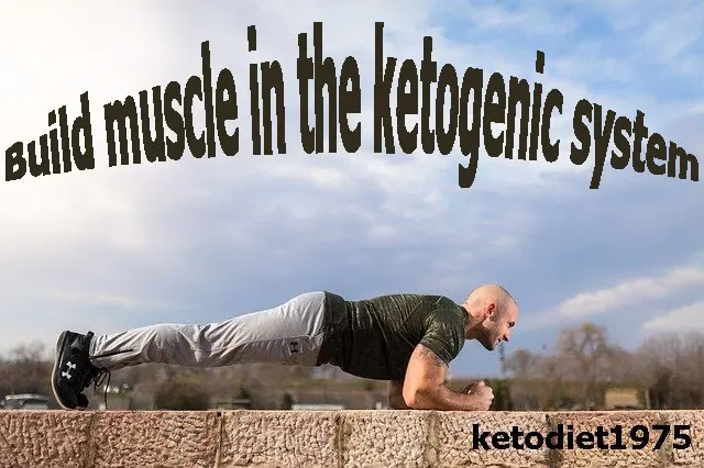 Build muscle in the ketogenic system