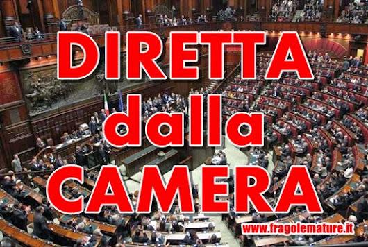 Francesco schipani google for Diretta camera deputati