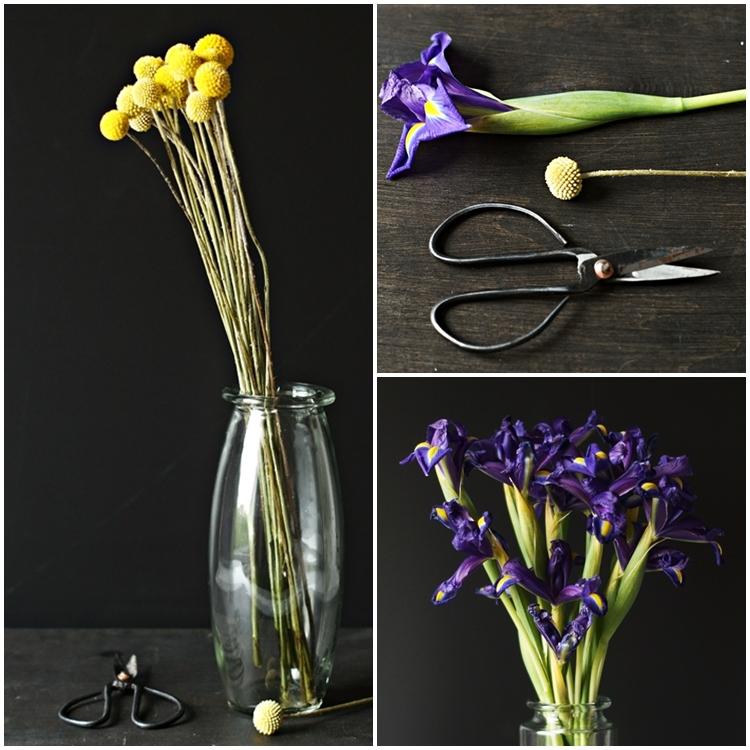 Blog & Fotografie by it's me! - Collage von Iris, Rainfarn und eine alte Schere
