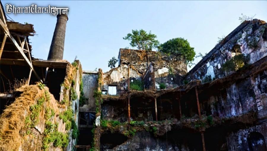 Mukesh mills