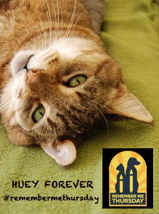 Honoring Huey in celebration of #Remembermethursday