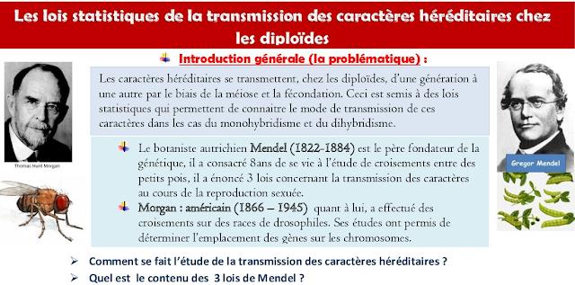تحميل دروس Transfert de l'information génétique au cours de la reproduction sexuée - La génétique humaine باللغة الفرنسية للسلك الثانوي