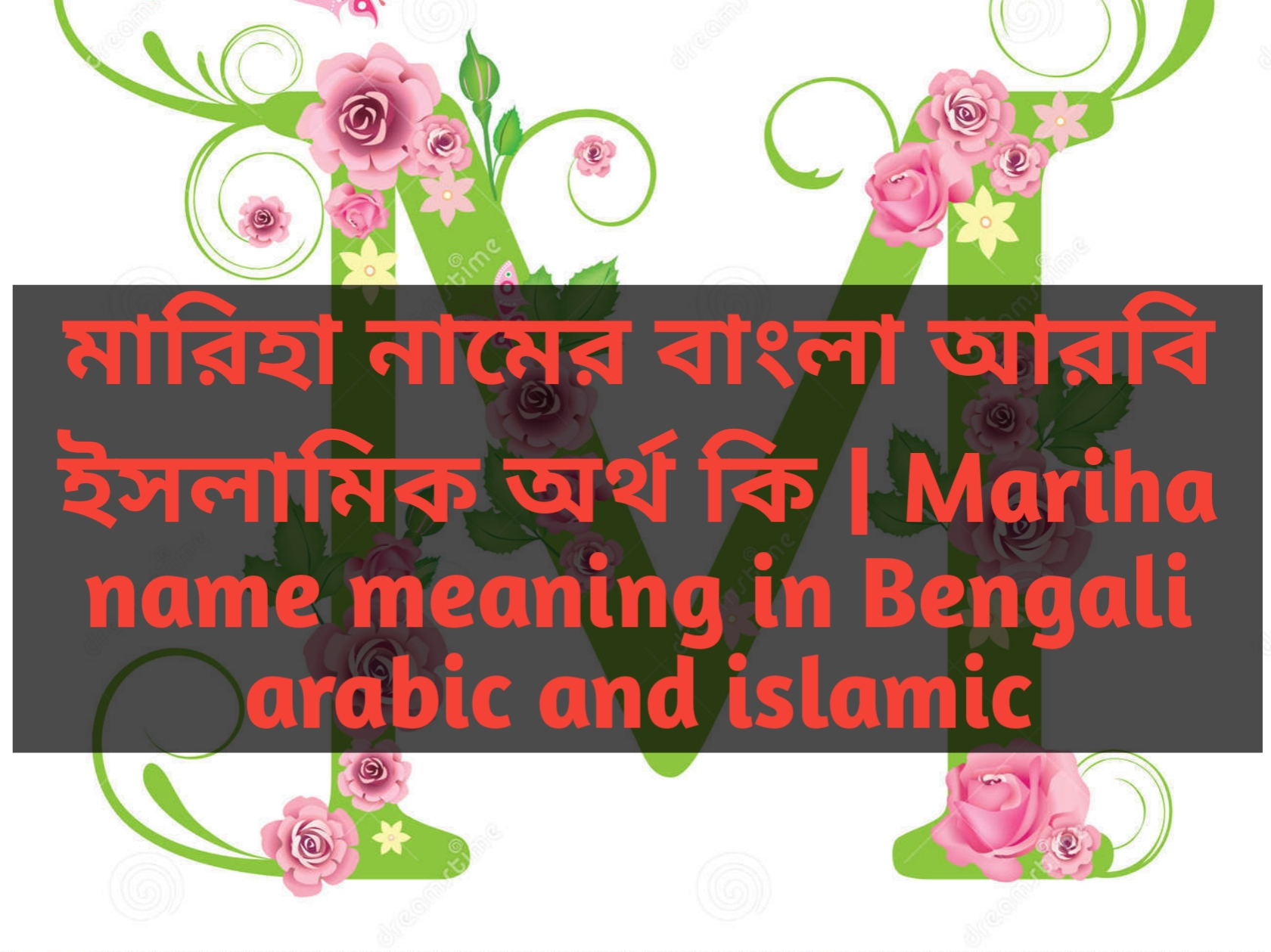 Mariha name meaning in Bengali, মারিহা নামের অর্থ কি, মারিহা নামের বাংলা অর্থ কি, মারিহা নামের ইসলামিক অর্থ কি,