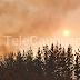 Detienen primer imputado por delito de incendio forestal en Maule