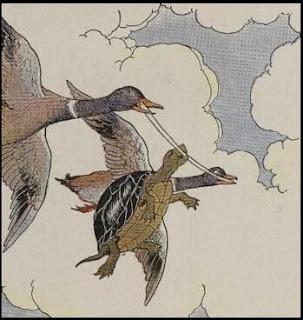 حكايات أطفال قصيرة قصة السلحفاة والبط