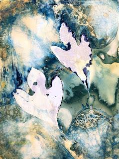 Wet cyanotype_Sue Reno_image 838