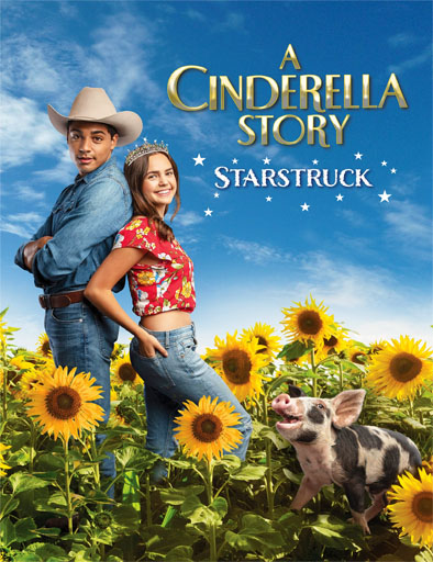 pelicula A Cinderella Story: Starstruck