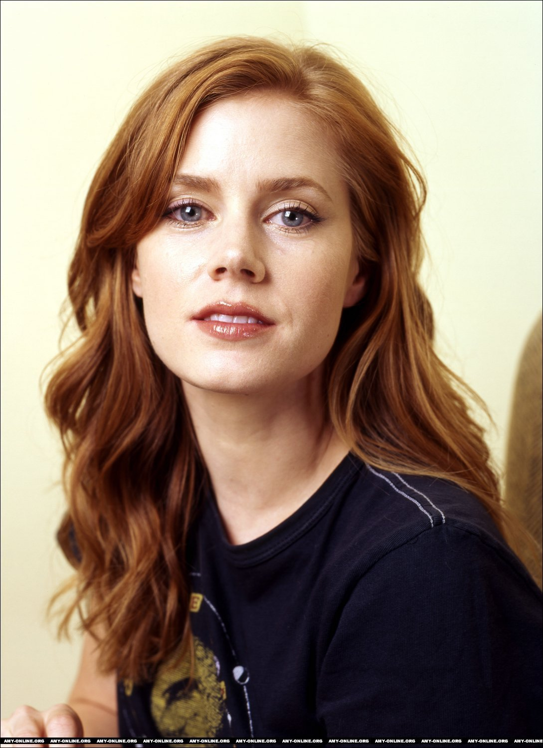 Amy Adams Wikipedia Español wikimise: amy adams wiki and pics