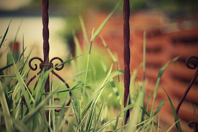 Stalowe dekoracje do ogrodu || Moje inspiracje