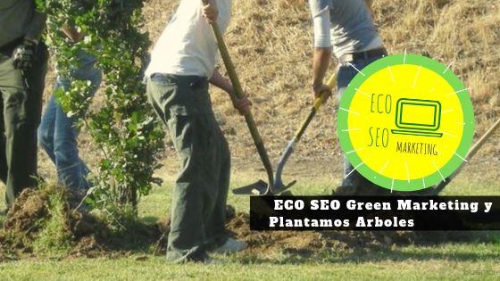 Nuestra Empresa ECO SEO Greenn Marketing: Imagen, posicionamiento, etc y plantamos arboles
