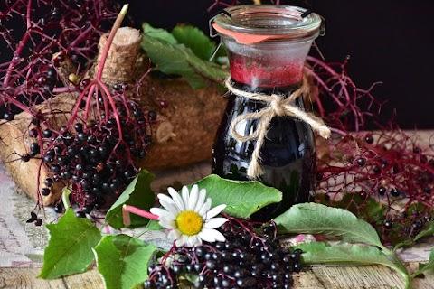 elderberry vinegar for winter flu season 2019