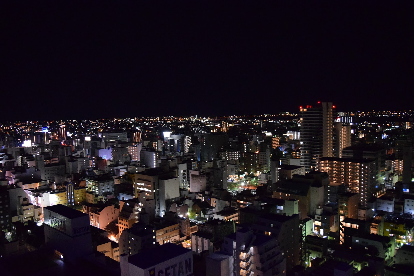 View of Shizuoka city skyline at night