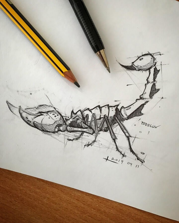 01-Scorpion-Psdelux-Animal-Drawings-www-designstack-co