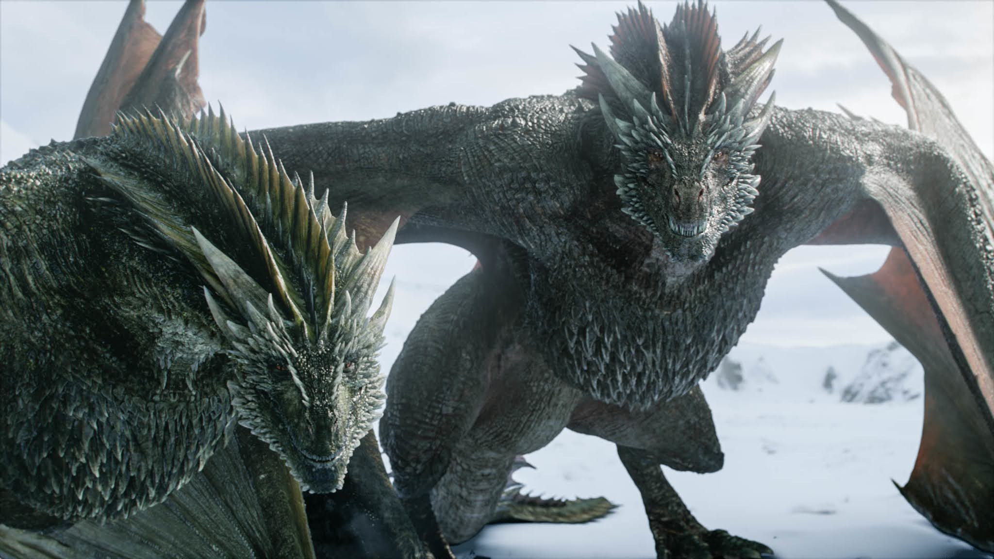 Prequels and series derived from Game of Thrones, the jewel of HBO