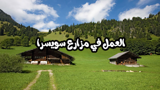 سويسرا تفتح مناصب عمل في مجال الفلاحة + كيفية التسجيل بالصور