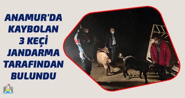 Anamur Haber,Anamur Son Dakika,Anamur Jandarma,Asayiş,