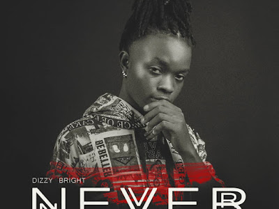 DOWNLOAD MP3: Dizzy Bright – Never