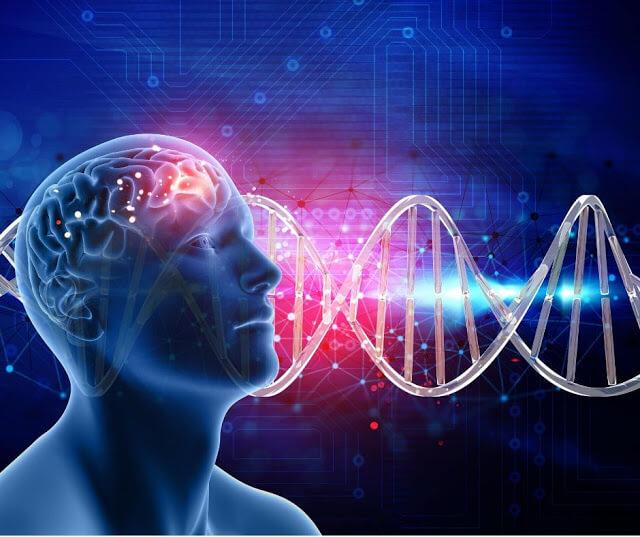 أفضل الأطعمة والعناصر الغذائية لتقوية الذاكرة وزيادة التركيز