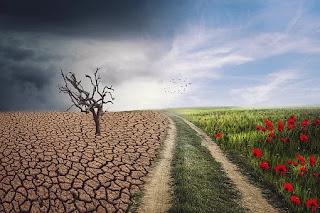 जलवायु परिवर्तन: एक वास्तविकता