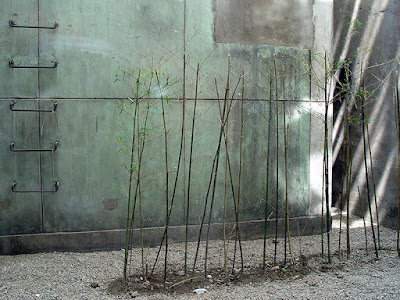 Urban Landscape Factory 798 Beijing China