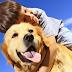 Pessoas que tem cachorros podem viver mais tempo, diz estudo
