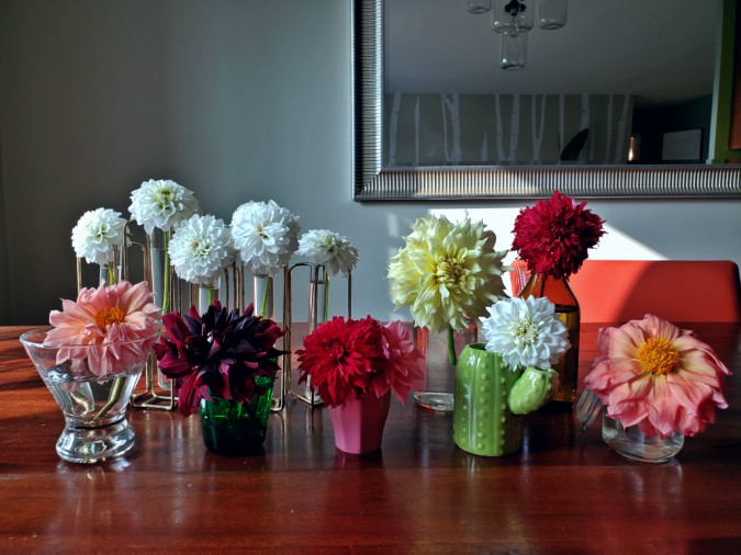 dahlias, flowers, hgtv, home decor, vases, flower power, pink, yellow, blooms, flower arrangment