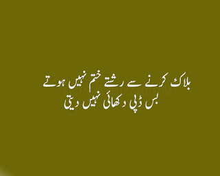 funny urdu quotes 21