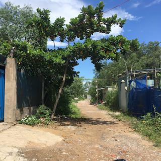 hẻm 12m đường bờ tây kinh cây khô xã phước lộc