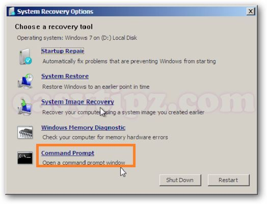 Select Command Prompt System Recovery Options