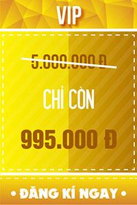 Vé VIP - 995.000 đ