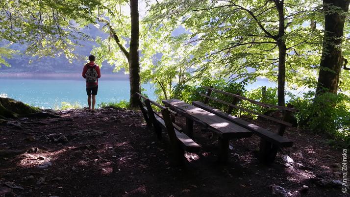 Национальный парк Биоградска Гора, Черногория