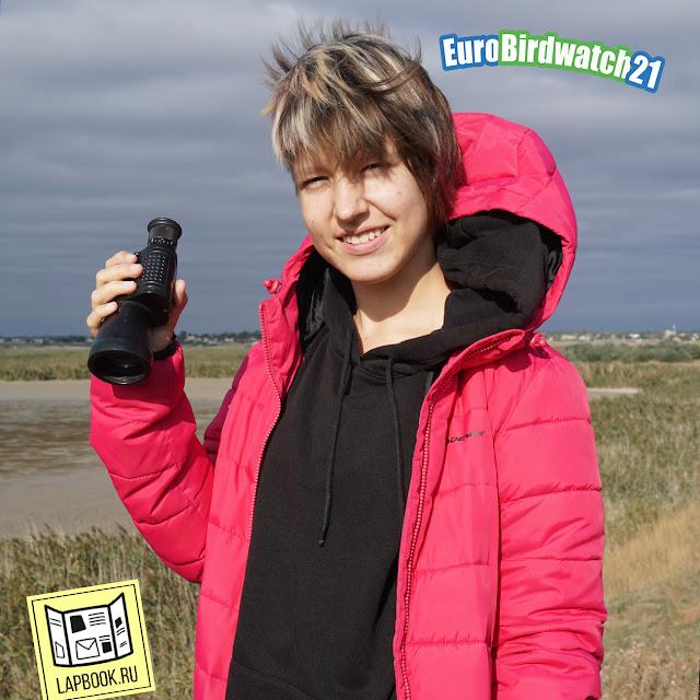 Учет птиц Eurobirdwatch
