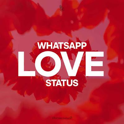 100+ Best WhatsApp Love Status, DP, Images, Quotes, Messages - SocialStatusDP.com