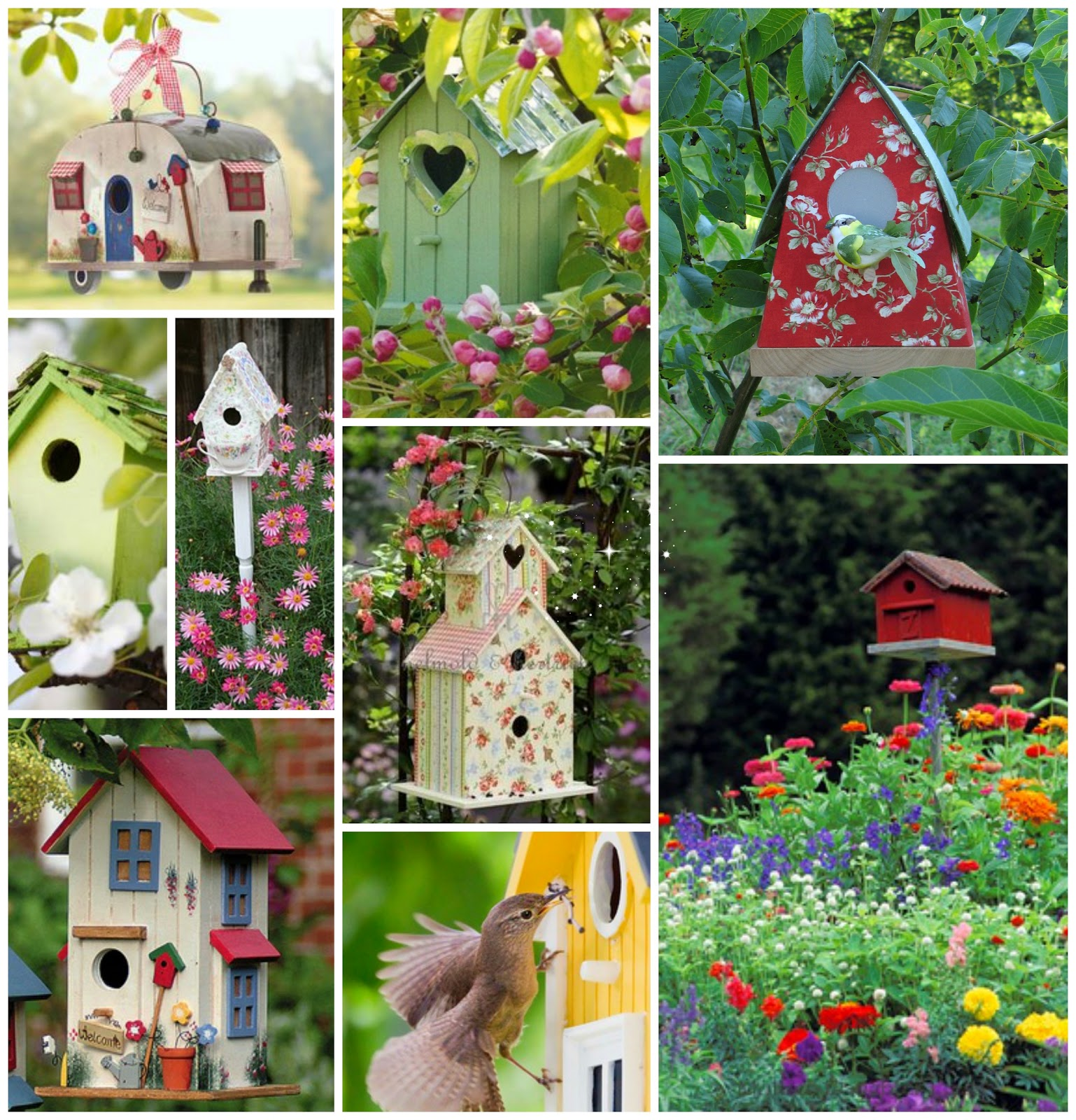 Collage Bird House, Anabel art-home