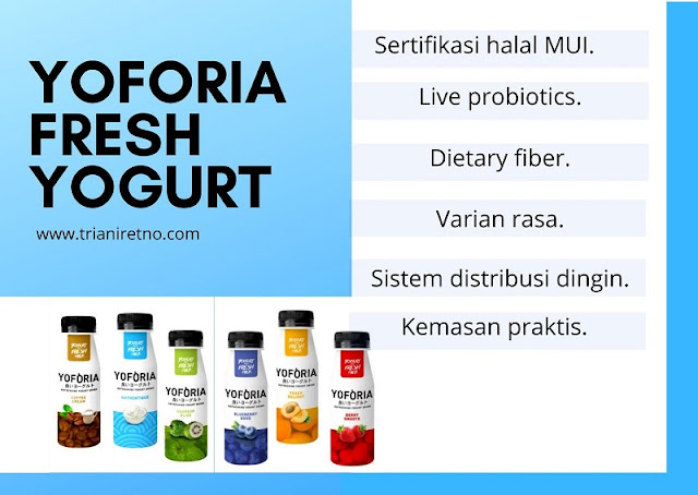 yoforia fresh yogurt dengan live probiotics
