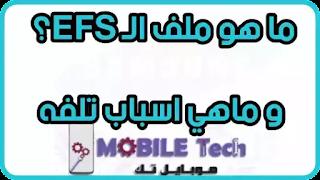 شرح ملف الـ EFS