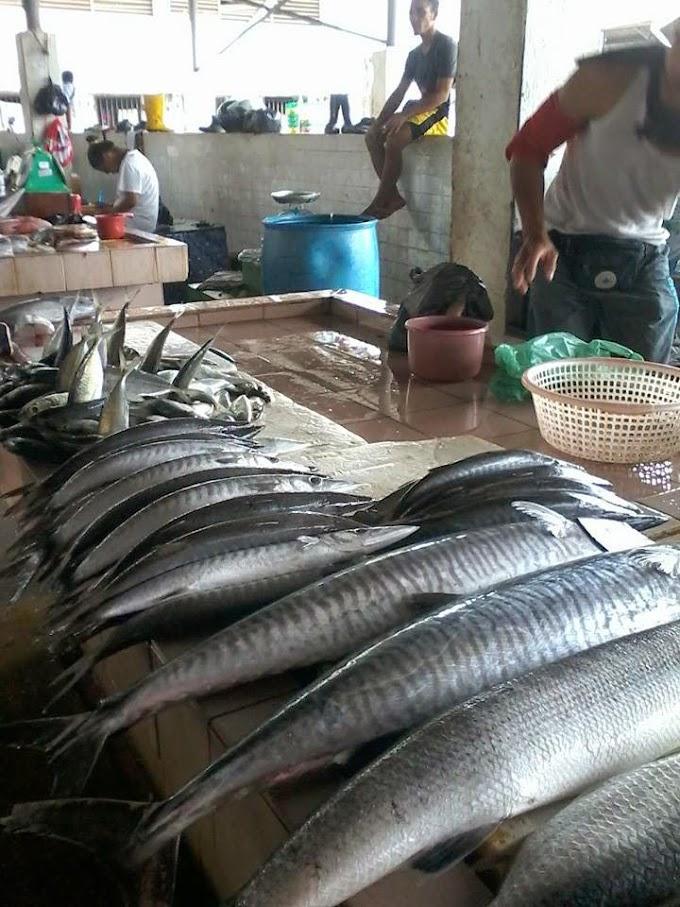 Pengalaman Pertama ke Pasar SAFMA
