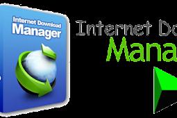 Internet Download Manager v6.31 Build 3 Full [IDM]