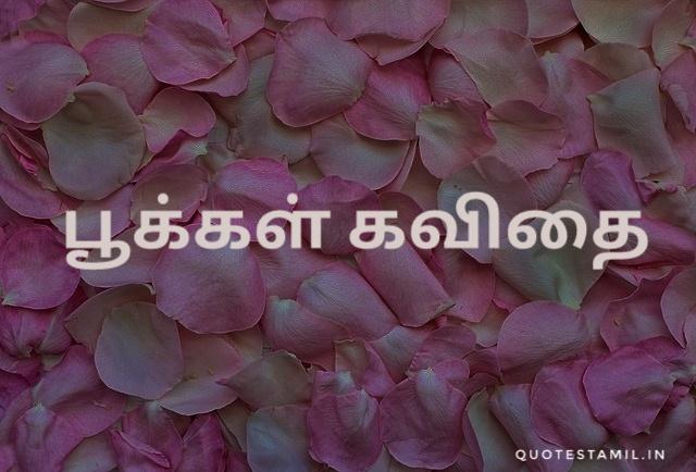பூக்கள் கவிதை | pookal kavithai in tamil