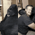 The Gorilla Koko Hadn't Laughed In 6 Months Until She Met Robin Williams