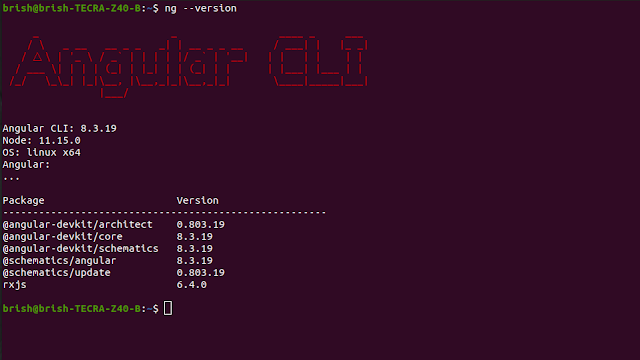 angular 8 environment configuration, setup and create a new project CLI