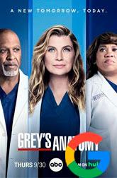 Greys Anatomy Temporada 18 subtitulos de google