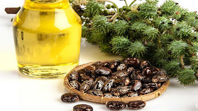 castor oil for glowing face